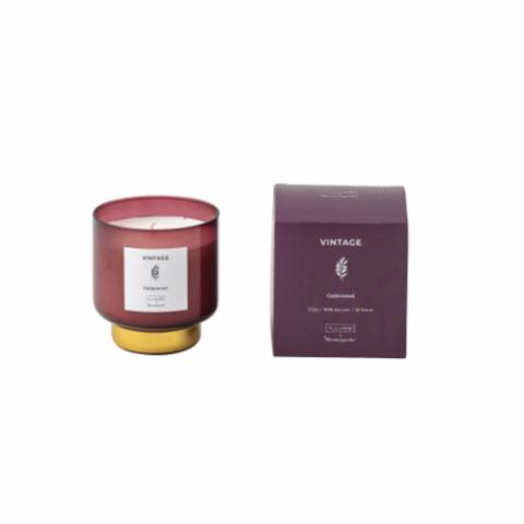 VINTAGE - Cedarwood Scented Candle, Natural wax