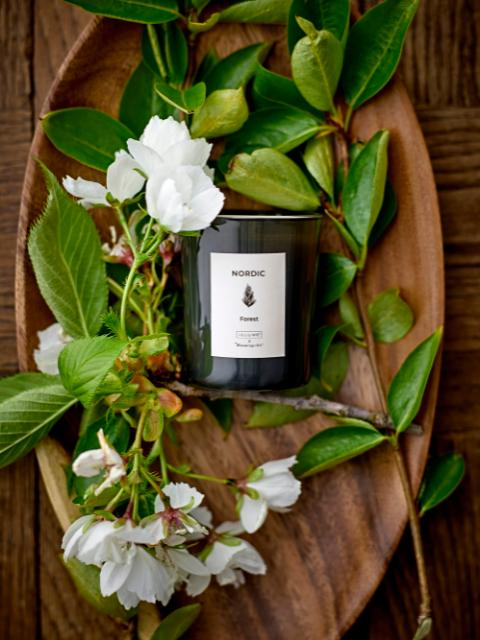 SEASONAL Scented Candle, Soy wax