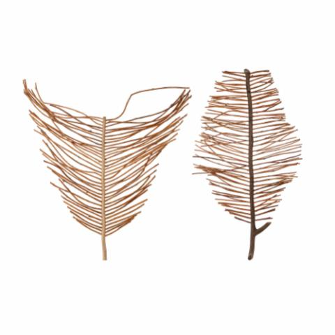 Enok Wall Decor, Brown, Blechnaceae